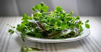 Shakespeare Salad