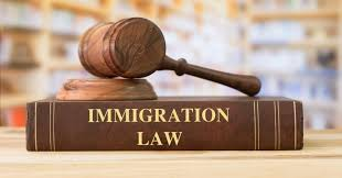 immigration law photo of book and gavel