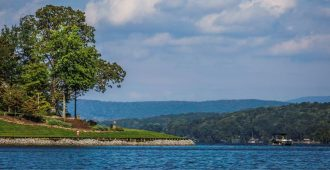 Tennessee River with tree and landscape